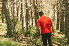 Homem que tem uma caminhada na floresta fotos de stock royalty free