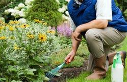 Homem que trabalha no jardim Fotos de Stock Royalty Free