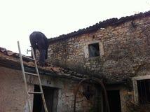 Homem que trabalha no telhado Fotografia de Stock