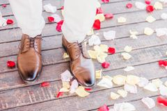 Homem que veste as sapatas de couro marrons que andam nas pétalas cor-de-rosa imagem de stock