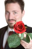 Homem romântico de Rosa fotografia de stock royalty free