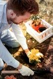 Homem ruivo impressionante sério que gosta de jardinar durante o fim de semana fotos de stock royalty free