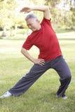 Homem sênior que exercita no parque Fotografia de Stock Royalty Free