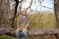 Homem sênior que senta-se em uma árvore em um parque Foto de Stock Royalty Free