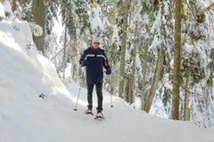 Homem Snowshoeing Imagens de Stock Royalty Free