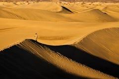 Homem solitário no terno que está em dunas de areia imagem de stock