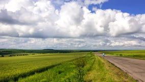 Homem sozinho na visão da estrada secundária no campo de trigo com sto das nuvens Imagens de Stock Royalty Free