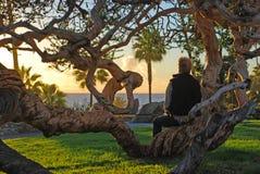 Homem superior que aprecia a opinião do por do sol no parque de Heisler, Laguna Beach, CA fotos de stock royalty free