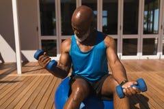 Homem superior que equilibra na bola do exercício ao treinar o bíceps com pesos no quintal da casa fotos de stock