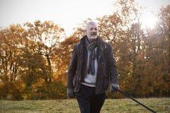 Homem superior que toma o cão para a caminhada em Autumn Landscape fotografia de stock royalty free