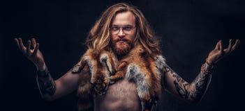 Homem tattoed despido do moderno do ruivo com cabelo exuberante longo e a barba completa que levantam com as peles da raposa em s imagens de stock