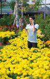 Homem vietnamiano entre flores amarelas Fotografia de Stock Royalty Free