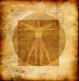 Homem vitruvian de Da Vinci Fotos de Stock Royalty Free