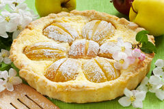 Homemade apple cake, apple fruit and blossom tree branch Royalty Free Stock Photos