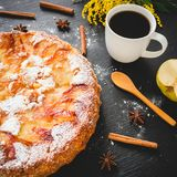 Homemade apple cake, fruits and coffee cup on dark background. Flat lay, Top view. stock image
