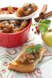 Homemade apple chutney Stock Photography