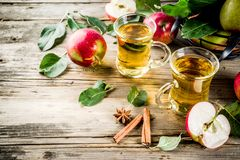 Homemade apple cider stock image