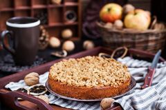 Homemade apple cinnamon crumb coffee cake. On tray Stock Images
