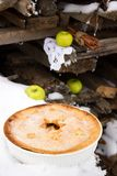 Homemade apple pie in ceramic form on the snow. Royalty Free Stock Photos