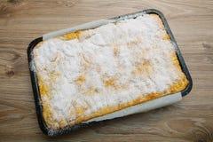 Homemade Apple Pie - Fresh From Oven Stock Image