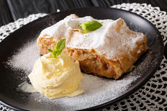 Homemade apple strudel with vanilla ice cream and mint closeup. Homemade apple strudel with vanilla ice cream and mint closeup on the table. horizontal Royalty Free Stock Image