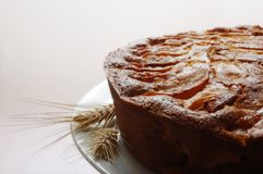 Homemade apple tart Royalty Free Stock Photos