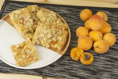 Homemade apricot cake on a plate. Freshly picked apricots on a wooden table. Stock Image