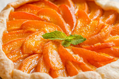Homemade apricot galette Stock Image