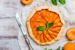 Homemade apricot galette Royalty Free Stock Images
