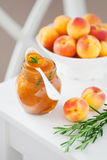Homemade Apricot Jam Stock Photos