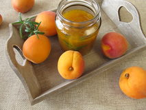 Homemade apricot jam with rosemary Stock Image