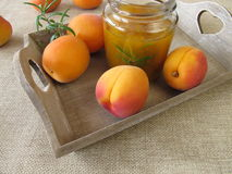 Homemade apricot jam with rosemary Royalty Free Stock Image