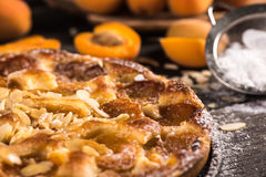 Homemade apricot tart with almonds and fresh fruits Stock Image