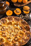 Homemade apricot tart with almonds and fresh fruits Stock Photography