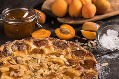 Homemade apricot tart with almonds and fresh fruits Royalty Free Stock Photos