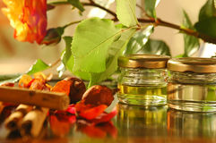 Homemade aromatic oils Stock Images