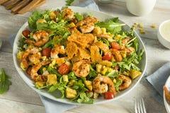 Homemade Arugula Shrimp and Polenta Salad Stock Image