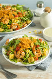 Homemade Arugula Shrimp and Polenta Salad Royalty Free Stock Photography