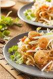 Homemade Asian Pad Thai Stock Image