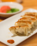 Homemade Asian pork gyoza Royalty Free Stock Photography