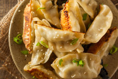Homemade Asian Pork Potstickers. With Soy Sauce Stock Images