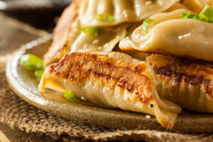 Homemade Asian Pork Potstickers. With Soy Sauce Royalty Free Stock Image