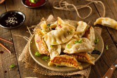 Homemade Asian Pork Potstickers Royalty Free Stock Photo