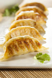 Homemade Asian Vegeterian Potstickers. With soy sauce and pork Stock Image
