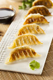 Homemade Asian Vegeterian Potstickers. With soy sauce and pork Royalty Free Stock Photo