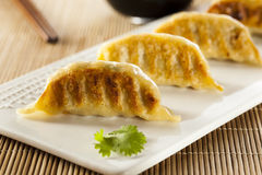 Homemade Asian Vegeterian Potstickers. With soy sauce and pork Stock Photos