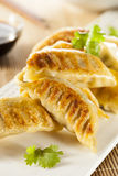 Homemade Asian Vegeterian Potstickers. With soy sauce and pork Royalty Free Stock Photography