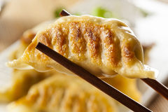 Homemade Asian Vegeterian Potstickers Stock Photography
