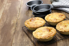 Homemade aussie meat pie. Close up Royalty Free Stock Image
