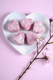 Homemade Australian style pink heart shape small lamington cake on heart shape white plate - vertical. Homemade Australian style pink heart shape small Royalty Free Stock Photos